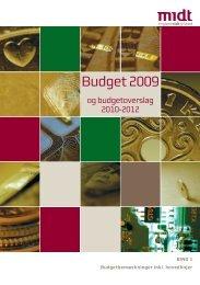 Budget 2009 - Region Midtjylland
