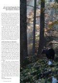 pro natura magazin - Pro Natura Graubünden - Seite 7