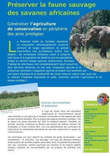Préserver la faune sauvage des savanes africaines - Cirad