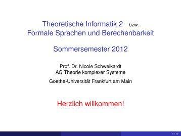 Kapitel 1 - Theorie komplexer Systeme - Goethe-Universität