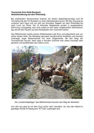 Herbstwanderung auf dem Rheinsteig - *¯*«TC Braubach »*¯*«