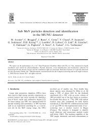 Sub MeV particles detection and identification in the MUNU detector