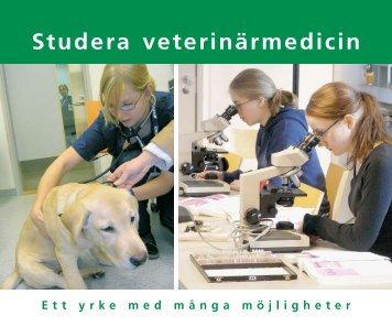 Veterinärmedicinska fakulteten - Helsinki.fi
