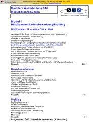 Modulare Weiterbildung STZ Modulbeschreibungen Modul 1