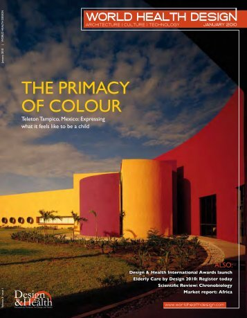 THE PRImAcy Of cOLOuR - the International Academy of Design ...