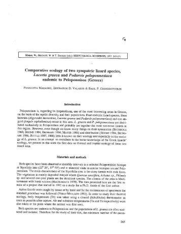 Comparative ecology of t\ro sympatric lizard species, Lacerta graeca ...