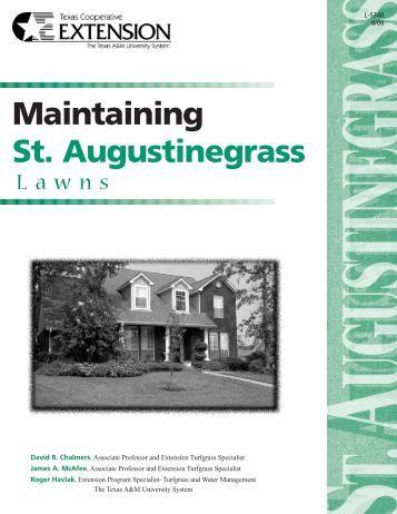 Maintaining St. Augustine Grass Lawns - McLennan