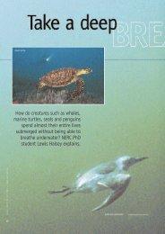 Halsey (2003) Take a deep breath .pdf - Roehampton University ...