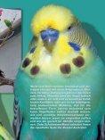 Leseprobe: Der Artikel als PDF (1,58 MB) - Birds Online - Seite 2