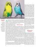 Leseprobe: Der Artikel als PDF (1,58 MB) - Birds Online - Seite 3