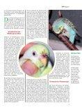 Leseprobe: Der Artikel als PDF (1,58 MB) - Birds Online - Seite 4