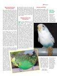 Leseprobe: Der Artikel als PDF (1,58 MB) - Birds Online - Seite 6
