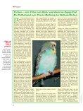 Leseprobe: Der Artikel als PDF (1,58 MB) - Birds Online - Seite 7