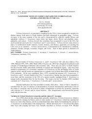TAXONOMIC NOTES ON VERBENA BONARIENSIS ... - Phytoneuron
