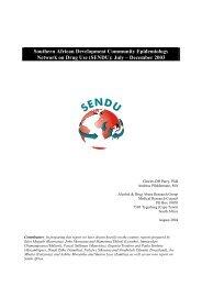 Southern African Development Community Epidemiology Network ...