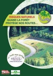 Risques naturels, quand la forêt protège nos routes - INTERREG ...