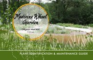 Plant IdentIfIcatIon & MaIntenance GuIde - Toronto and Region ...