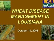 Wheat Disease Management - Louisiana Agricultural Consultants ...