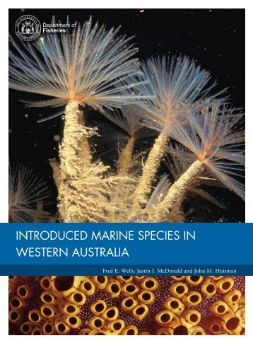 introduced marine species in western australia - Department of ...