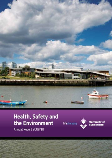 Health, Safety and the Environment - DocuShare - University of ...
