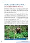 Vom Kakaobaum bis zum Konsumenten - SÃœDWIND-Institut - Seite 6