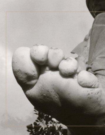 Informe Nacional de Desarrollo Humano 2003: Callejon con salida 3