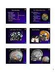WEB - Radiology - Page 5
