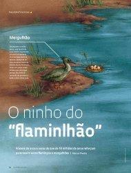 Mergulhão - Revista Pesquisa FAPESP