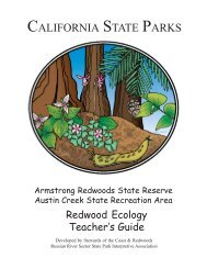 Armstrong Redwoods Redwood Ecology Teacher's Guide