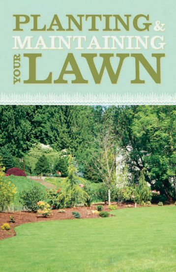 Planting and Maintaining Your Lawn - Regional Water Providers ...