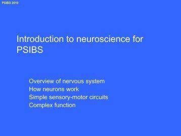 intro to neuroscience (pdf 3Mbytes)
