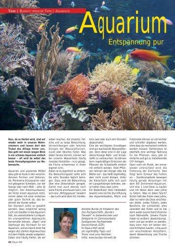 Aquarium, Entspannung pur