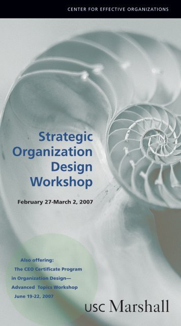Strategic Organization Design Workshop - Center for Effective ...