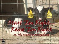 Start ' Em Right … Raise ' Em Right - University of Wisconsin ...