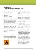 ATEX og rustbeskyttelse - Industriens Branchearbejdsmiljøråd - Page 5