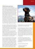 BERGER & Co. - Dobermann Verein Schweiz - Seite 7