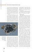 Prehistoric Herdsmen - Polish Academy of Sciences - Page 3