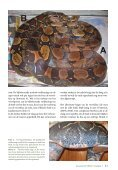 Keeping a pair of Boa constrictor as pets: 15. Ecdysis 7 ... - verveen.eu - Page 3