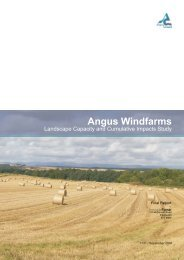 Landscape Capacity and Cumulative Impacts Study - Angus Council