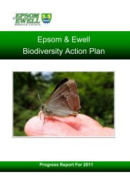 Epsom & Ewell Biodiversity Action Plan Progress Report 2011 (pdf ...