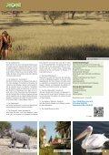 Jedek Reisen Gruppenreisen 2015 - Page 5