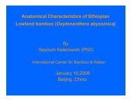 Anatomical Characteristics of Ethiopian Lowland bamboo ...