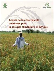 Acquis de la crise rizicole : politiques pour la ... - Africa Rice Center