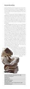 maecenas - Hessische Kulturstiftung - Seite 5