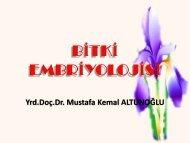 Bitki Embriyolojisi 6