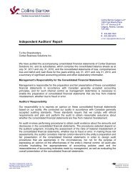 Independent Auditors' Report - Cortex Business Solutions Inc. - Page