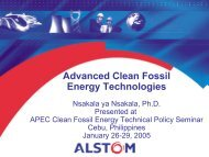 CO - Expert Group on Clean Fossil Energy