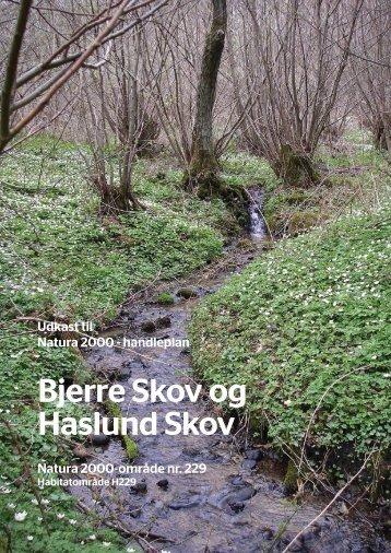 Bjerre Skov og Haslund Skov - Favrskov Kommune