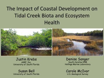 how does coastal development impact the Environmental impacts of tourism  tourism development can put pressure on  changes in salinity and siltation can have wide-ranging impacts on coastal.