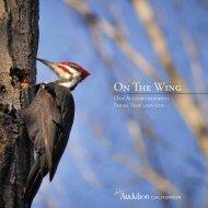 Annual Report, 2010 - 2011 - Audubon California - National ...